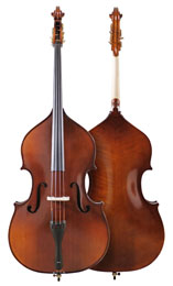 Professional DB303 (Violin) model